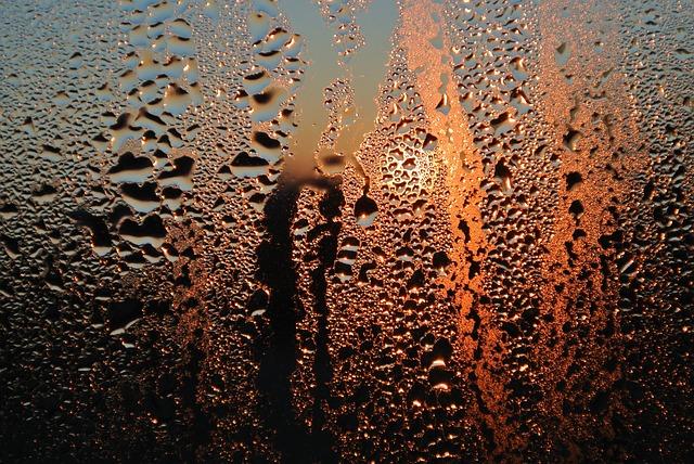 sweaty windows, window condensation